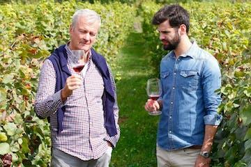 tasting wine in a vineyard tour