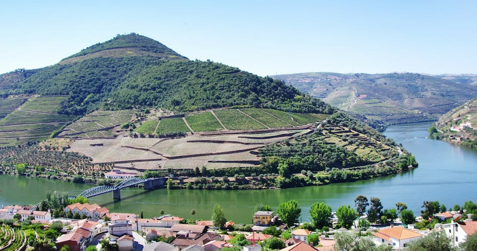 Douro Wine valley view