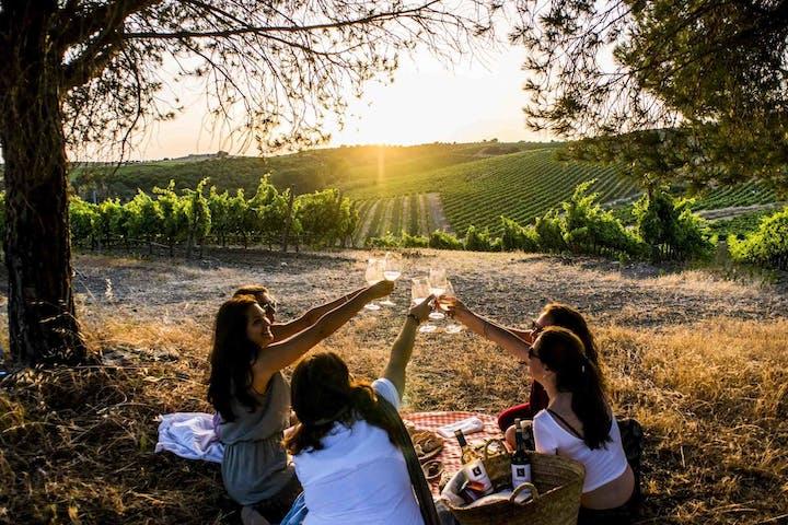 Picnic at the Vineyard
