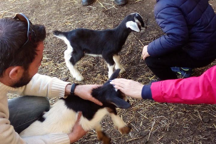 People with goats