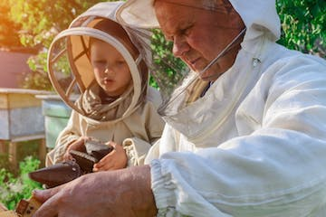 A man and a kid seeing bees