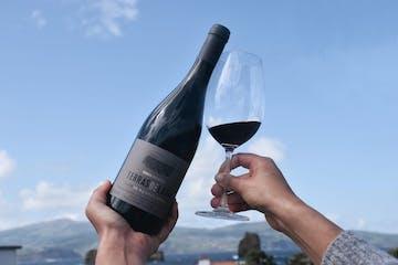 azores wine tour