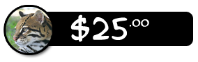 $25 Donation Button
