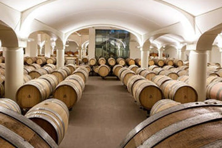 Sangiovese winery in Bologna