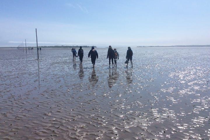 The Pilgrim's Way to the Holy Island of Lindisfarne Walk