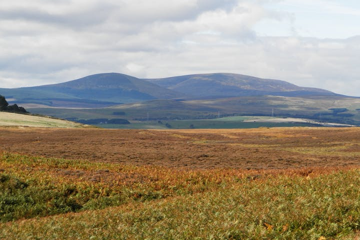 Eglingham and Bewick Moor