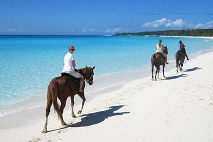 horseback riding on Punta Cana beach