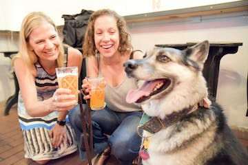 people on Dog Friendly NYC Brewery Tour