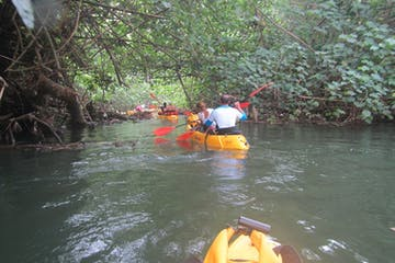 group kayaking on the wailua river