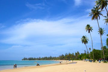 Rainforest & Luquillo Beach