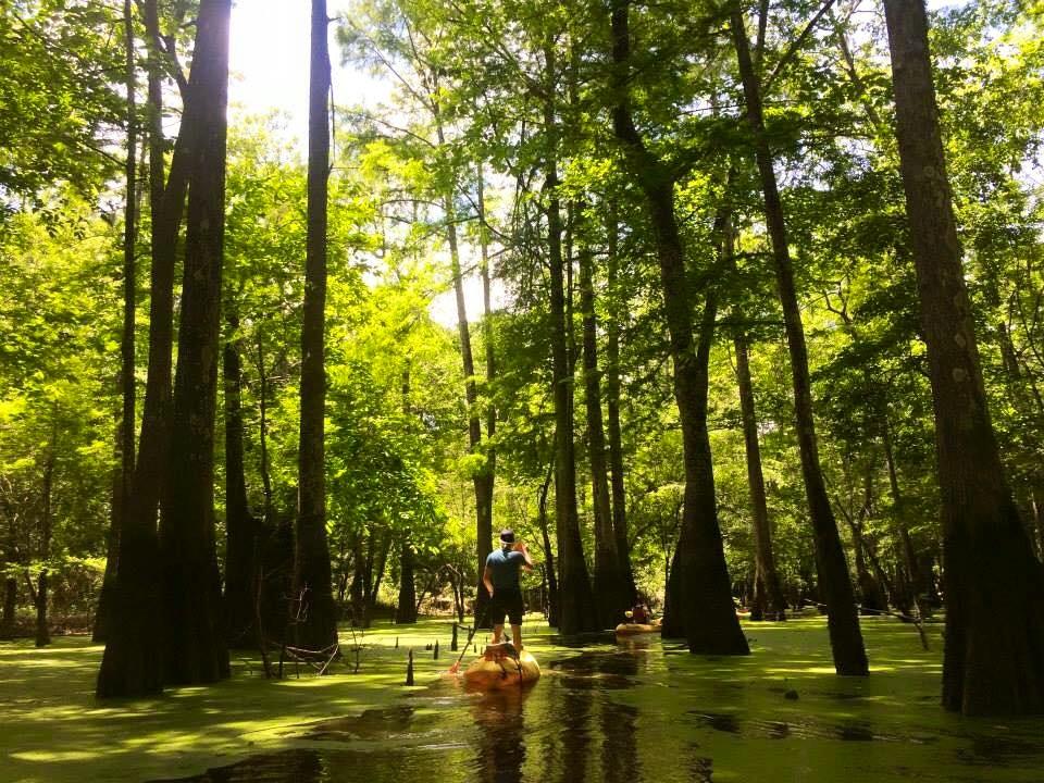 nola swampy kayak