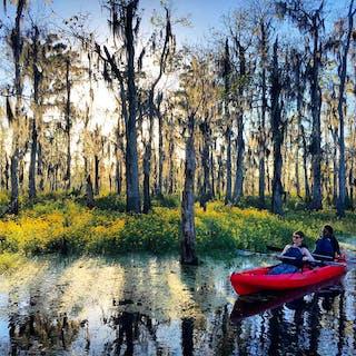 kayak tour in new orleans louisiana