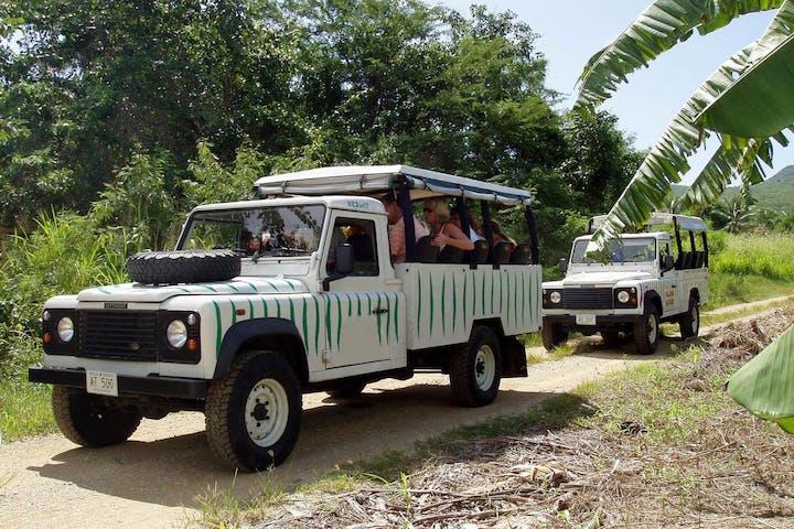 safari st lucia