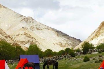 Zanskar Trekking Ladakh