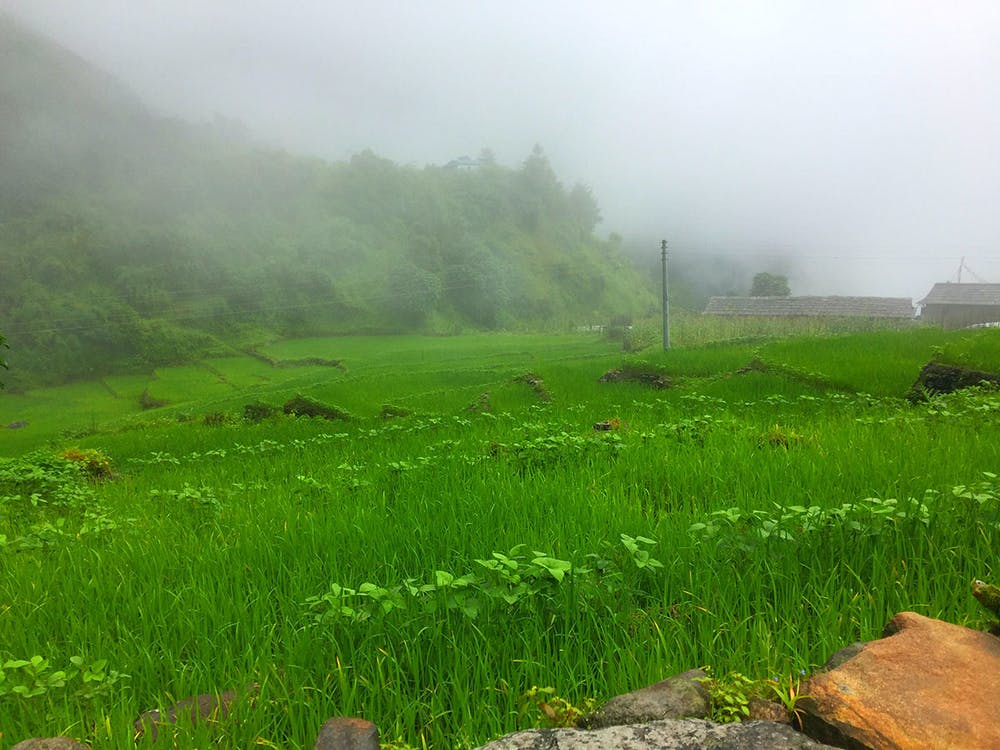 Trekking in Nepal during Monsoon