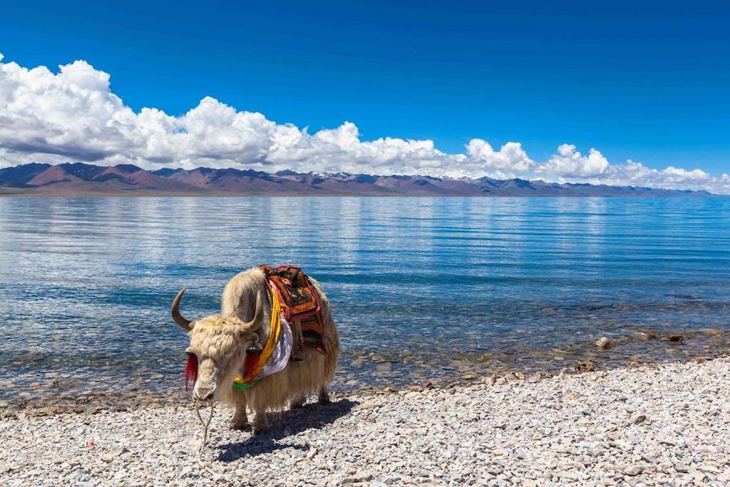 Namtso Lake, Tibet.