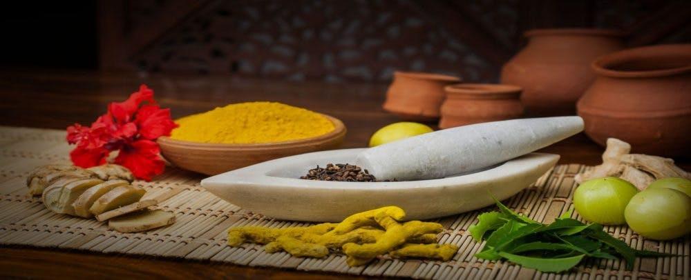 Ayurvedic food for satisfactory diet