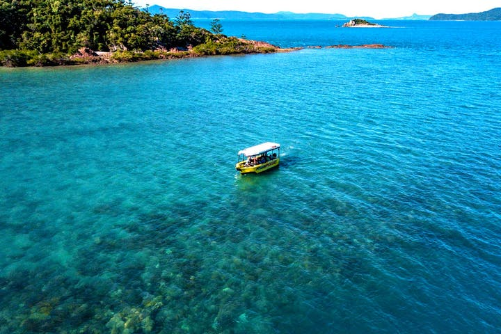 Glass Bottom Boat Tour Airlie Beach, The Whitsundays. A 70min Glass bottom boat cruise amongst Airlie's local coral reefs. The perfect eco discovery tour for all ages