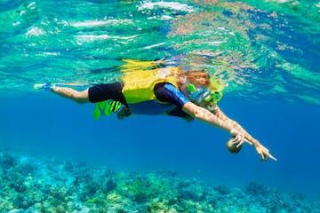 ocean lessons underwater