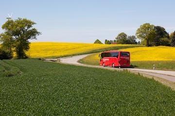 Ein Bus auf einer Landstraße umgeben von grünen und gelben Feldern