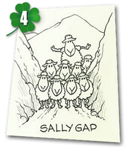 Sallygap drawing