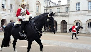 a person riding a horse in front of Horse Guards