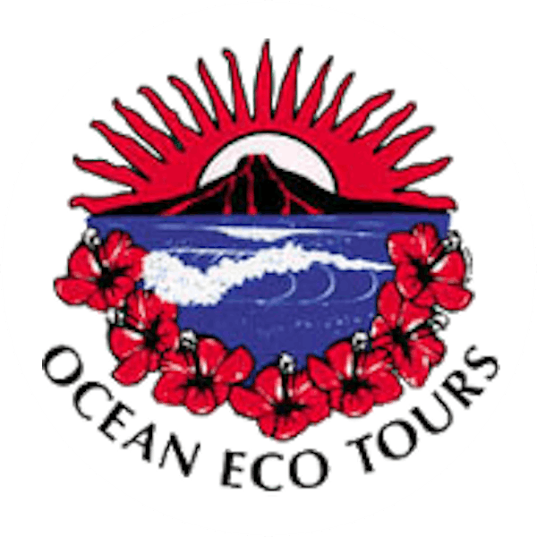 Ocean Eco Tours - Kailua, Kona Hawaii WaterSport Lessons, Snorkeling, and Scuba Diving Adventures