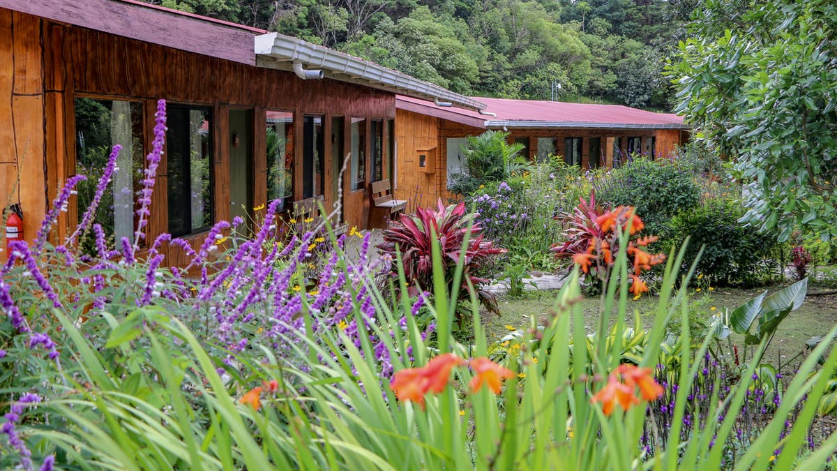 Hotel El Bosque en Monteverde