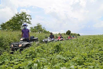 ATV riders in the jungle