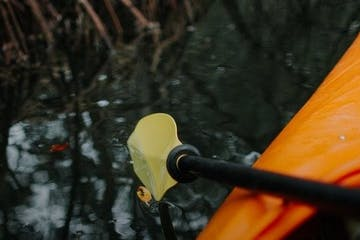 close up to a paddle of a kayak
