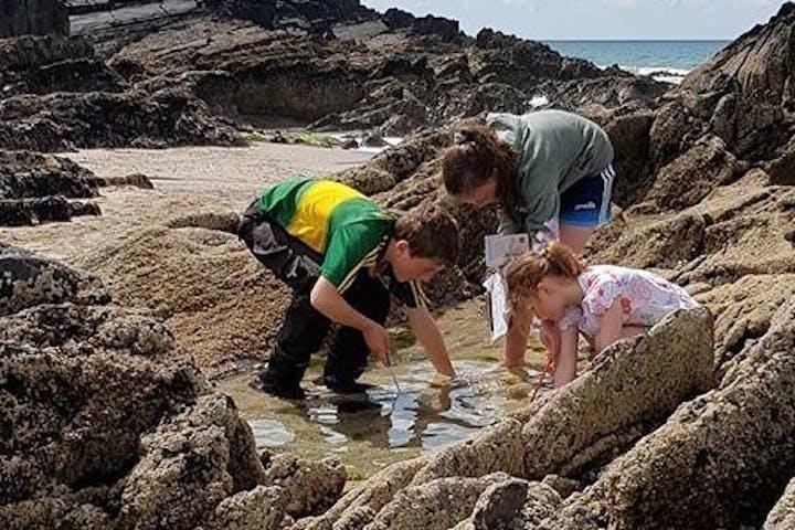 children exploring the seashore
