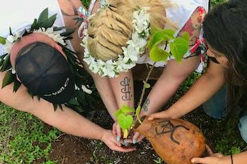Oahu Community Service Tours