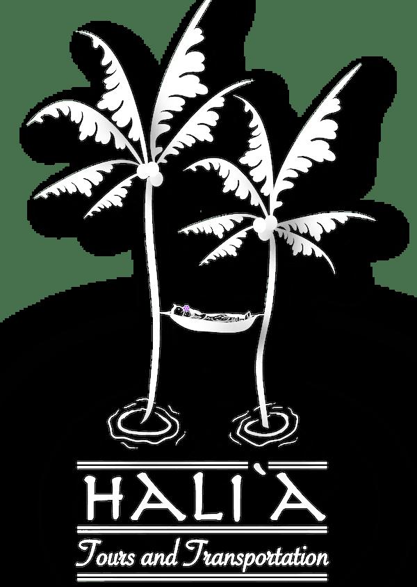 Halia Tours an Transportation
