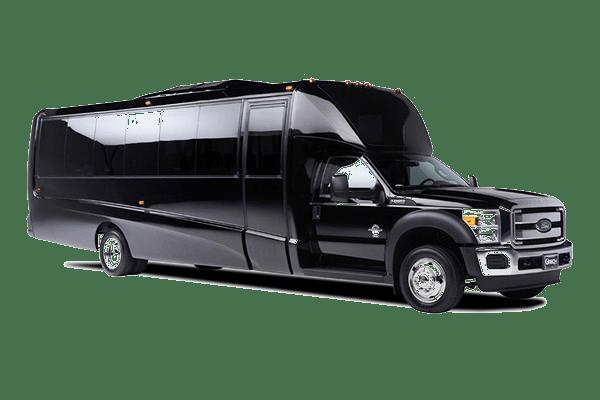 Luxury Bus Pic
