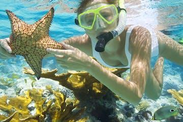 Swim, Snorkel & Lunch