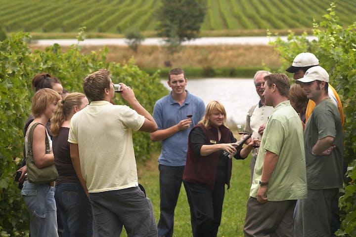 grupo haciendo una cata de vinos