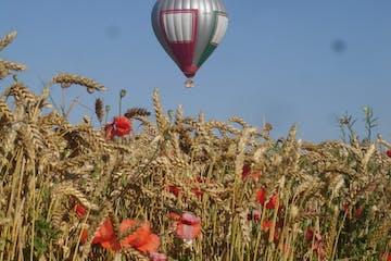 flores y un globo volando detrás