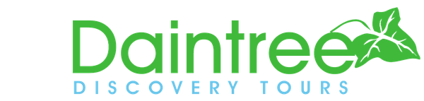 Daintree Discovery Tours logo