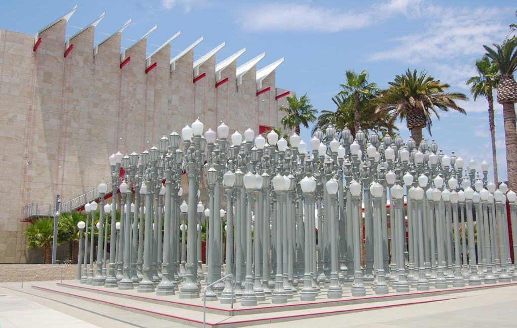a group of palm trees with Los Angeles County Museum of Art in the background