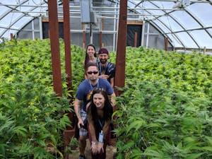 people between the plants