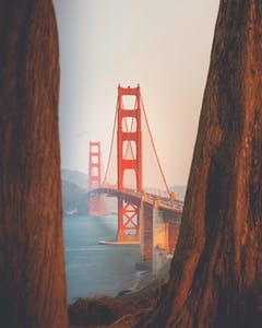 Golden Gate Bridge through the redwoods