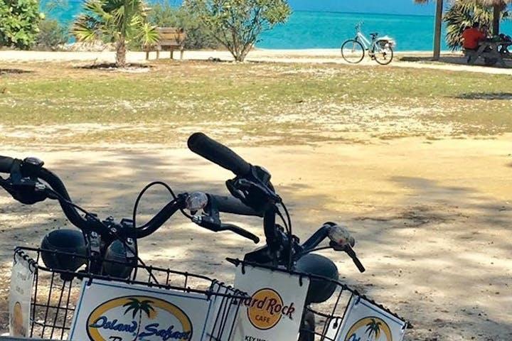 bike trailer on beach