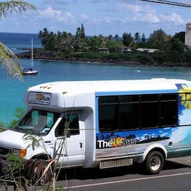 Gallery | The Surf Bus