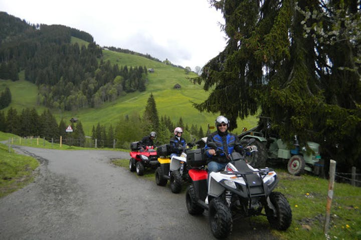 people on quads parked near the forest