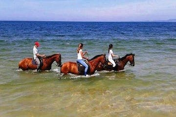 People enjoying a tour with horses inside the water
