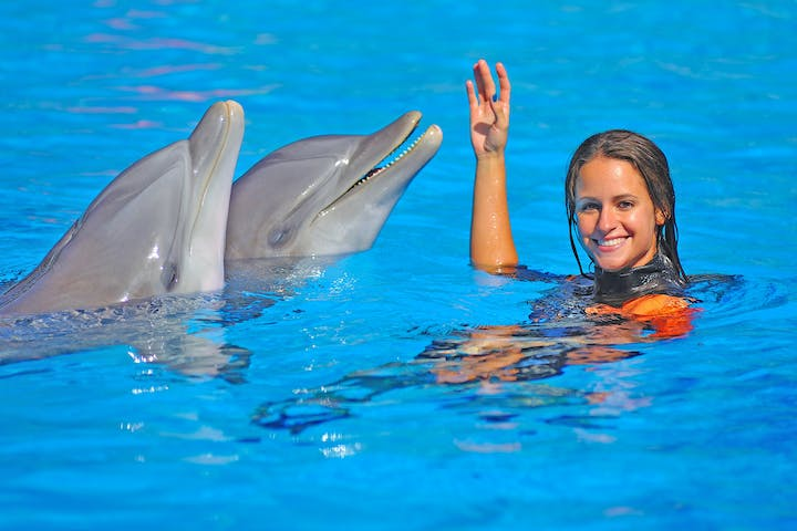 Woman in a pool with two dolphins