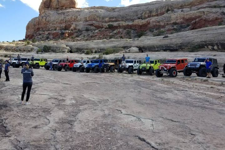 12 jeeps lined up ina row