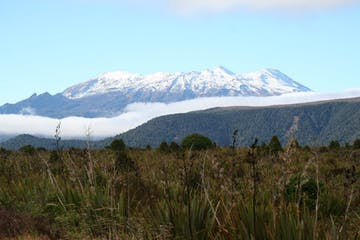 Tongariro with foris eco-tours