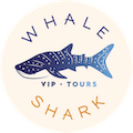 Private VIP Whale Shark Tour