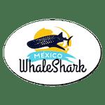 mexico whaleshark